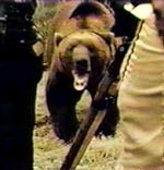 Grizzly Documentary